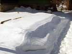 Зимующая грядка с розами - укрыта толстым слоем снега