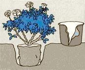 посадка розы - рис.5